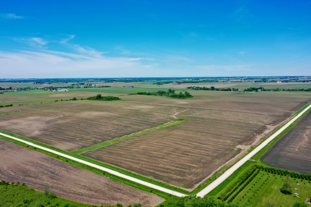 298+/- Acres Chickasaw County, IA - AUCTION