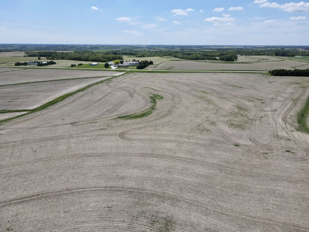 55+/- Acres Olmsted County, MN