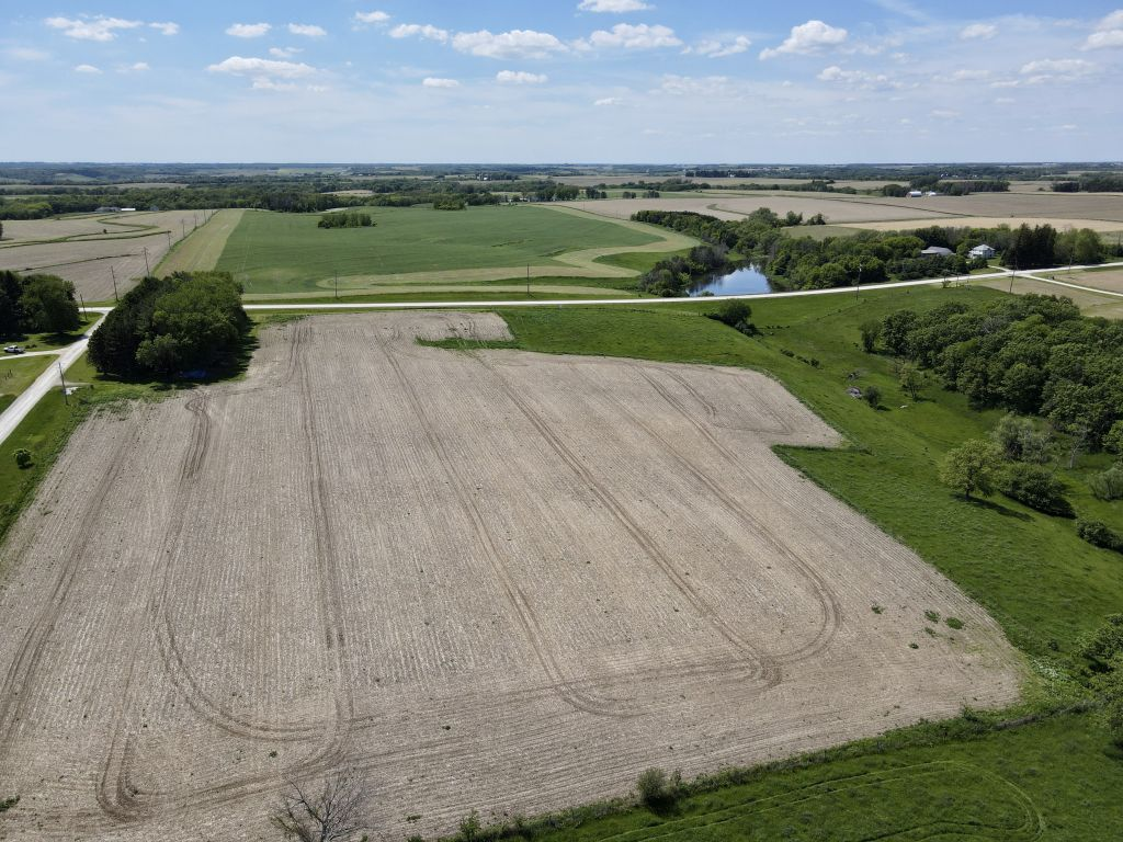 21+/- Acres Olmsted County, MN