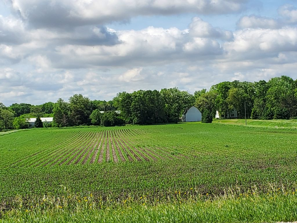 159+/- Acres Fillmore County, MN