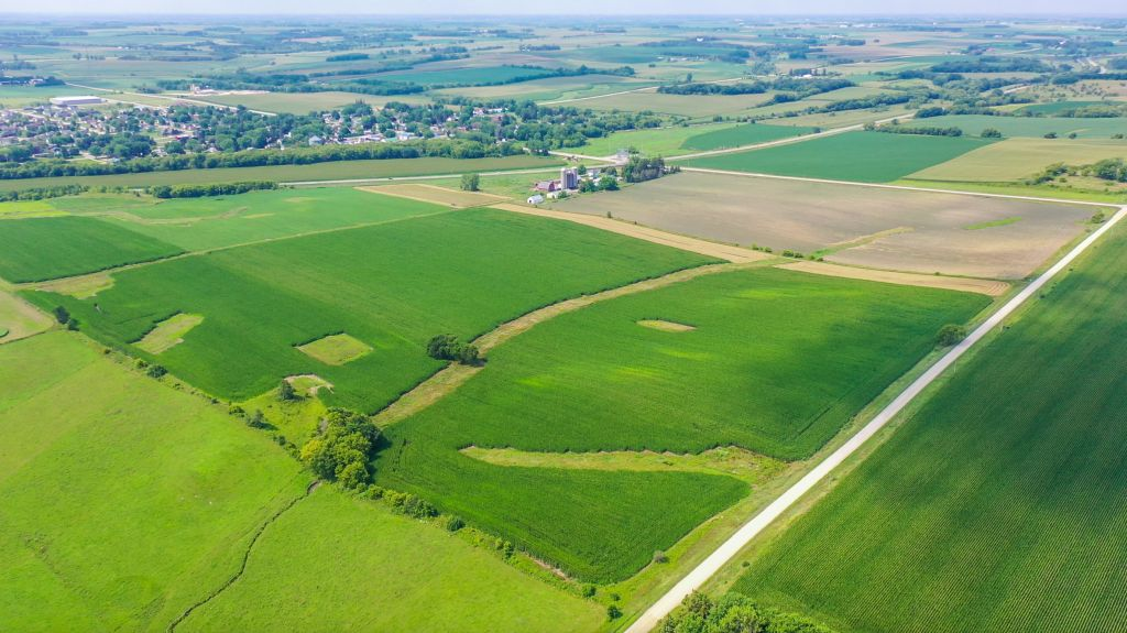 200+/- Acres Olmsted County, MN - AUCTION!