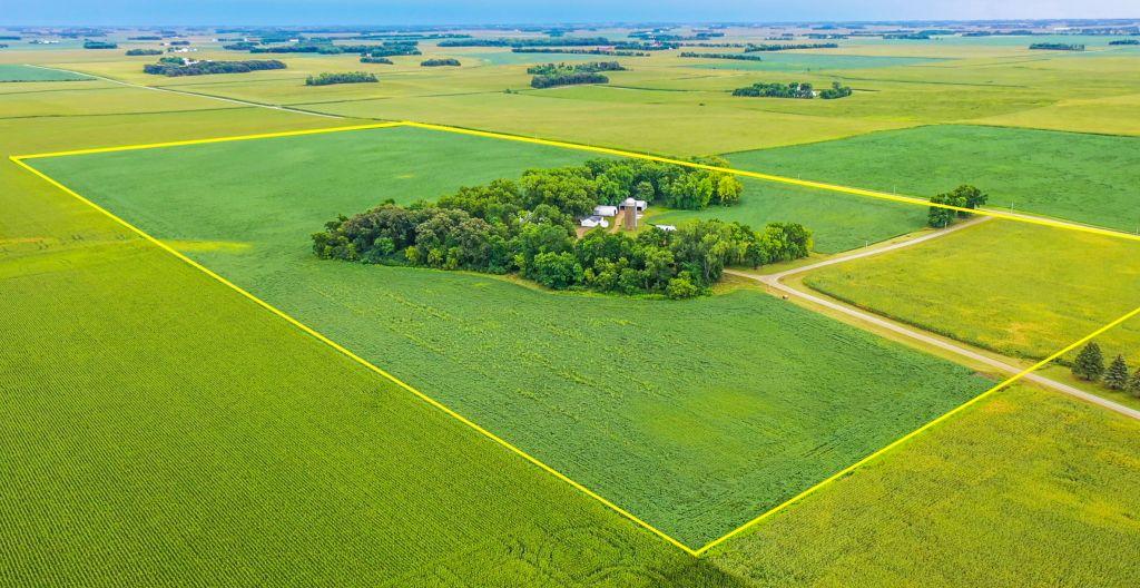 80+/- Acres Faribault County, MN - AUCTION