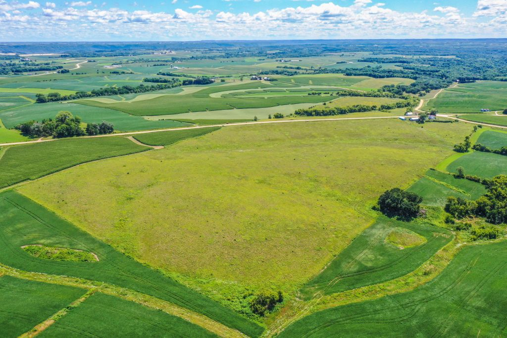 96.75+/- Acres Clayton County, IA - AUCTION