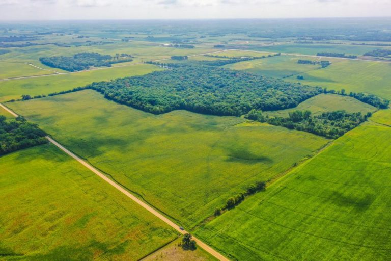 320+/- Acres Goodhue County, MN – AUCTION