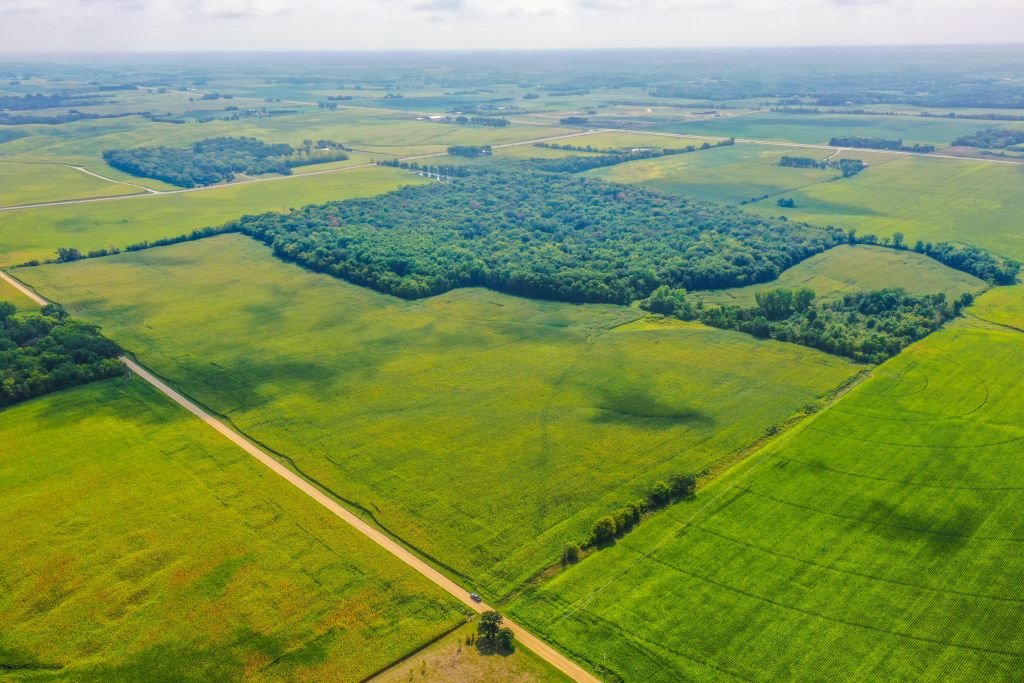 320+/- Acres Goodhue County, MN - AUCTION