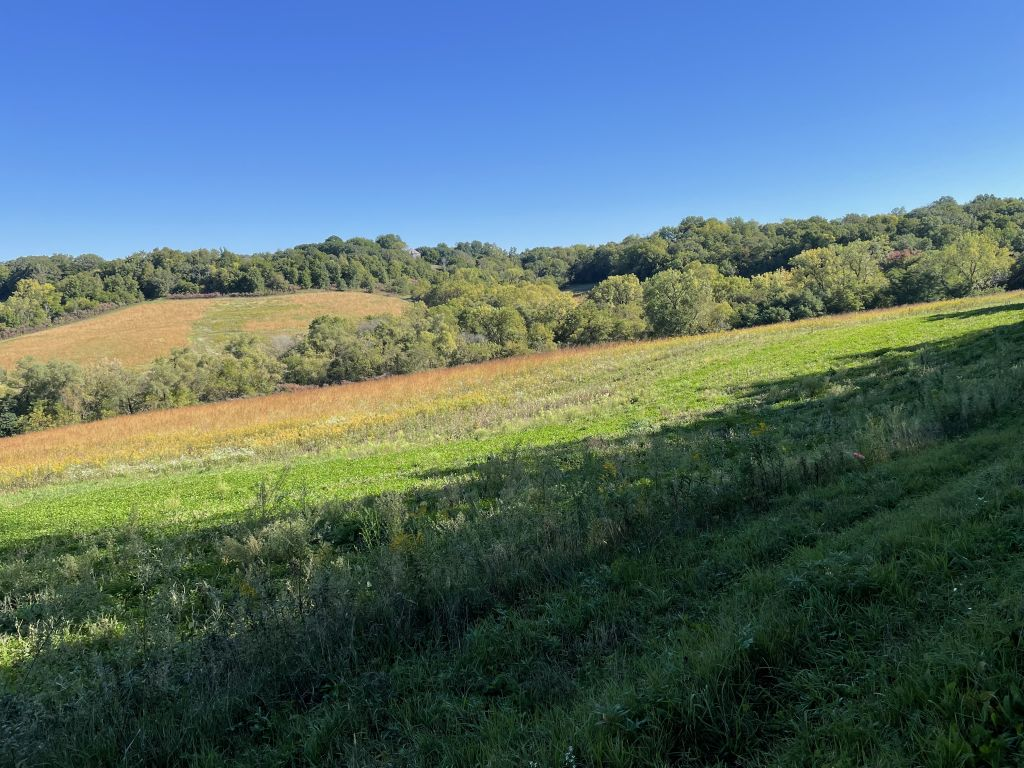 133+/- Acres Clayton County, IA