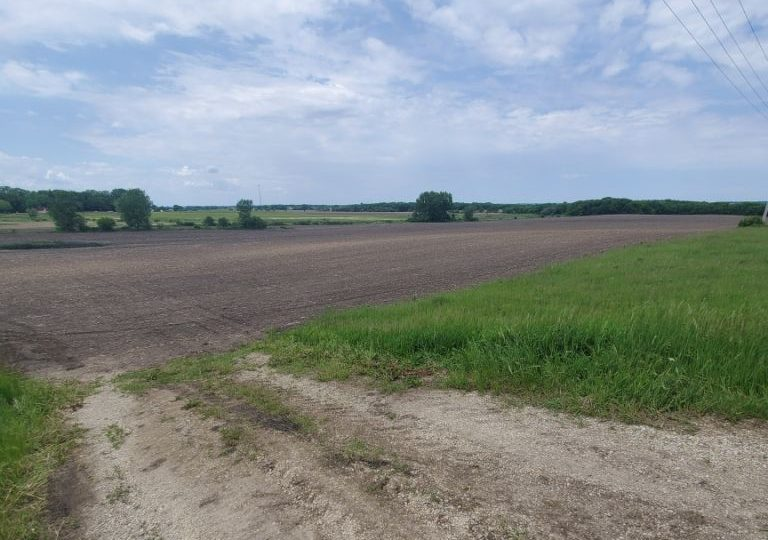 99+/- Acres Olmsted County, MN
