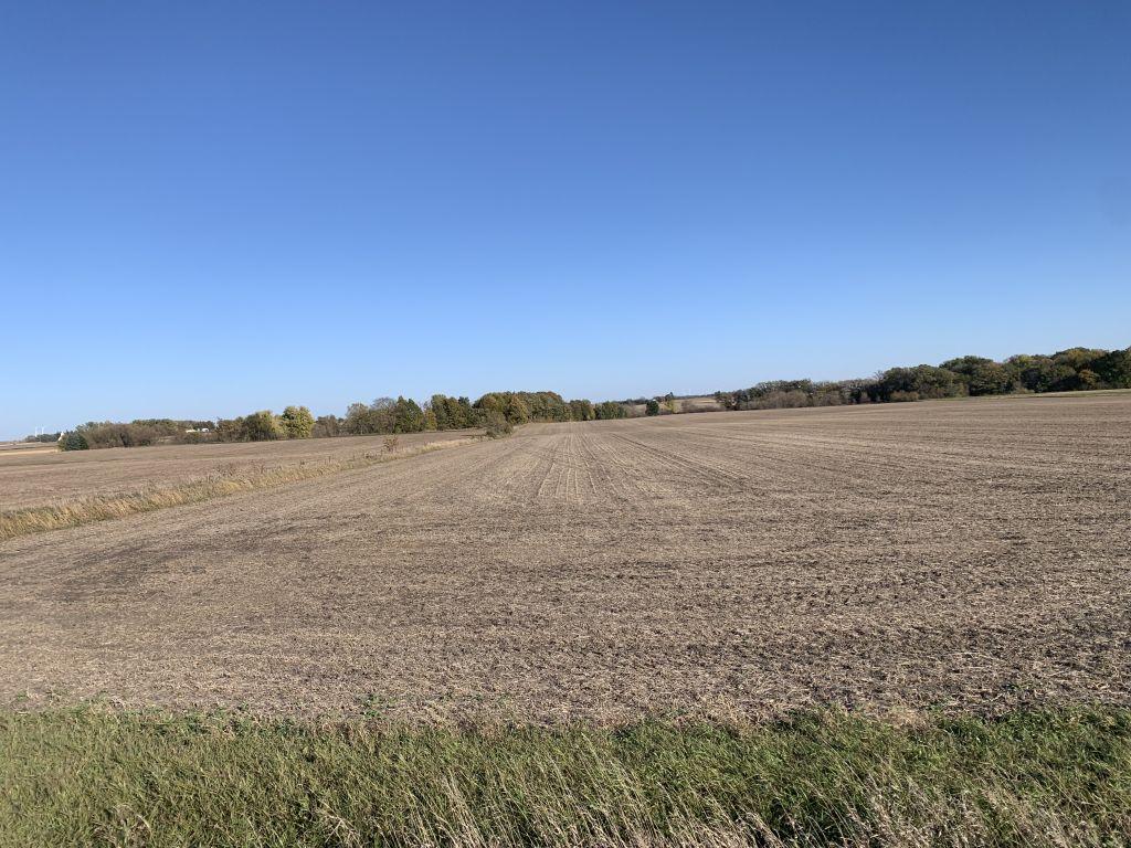 130.4+/- Acres Mower County, MN
